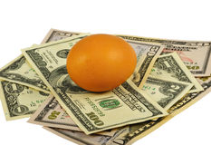 Brown Egg And Dollars. The brown egg lays on dollars bills. Isolated on white. Image is processed from 16 bit NEF files Royalty Free Stock Photos