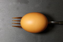 A brown egg on a fork Stock Photos