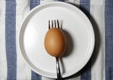 A brown egg on a fork Royalty Free Stock Photography