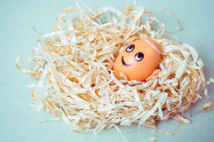Brown egg with funny angel face in a nest.  Royalty Free Stock Photography