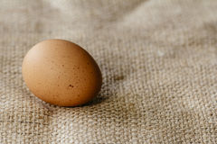 Brown egg on hessian Stock Photo