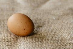 Brown egg on hessian Stock Photo