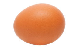 Brown egg isolated Stock Photo