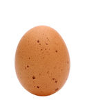 Brown egg. A brown egg isolated on white background Royalty Free Stock Images