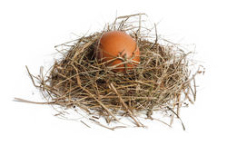 Brown egg in nest. Isolated on white stock photo
