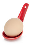 Brown egg in a red ceramic spoon Royalty Free Stock Photos