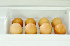 Brown egg stored on tray in refrigerator. Door Royalty Free Stock Photography