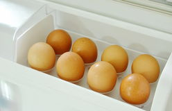 Brown egg stored on tray in refrigerator door Stock Photography