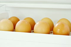 Brown egg stored on tray in refrigerator. Door Stock Photography