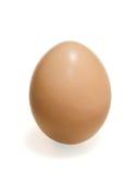 Brown egg vertical Stock Image