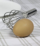 Brown egg, whisk, and plate Royalty Free Stock Images