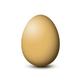 Brown egg on white background. Brown egg isolated on white background Stock Image