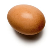 Brown Egg on White. Background Royalty Free Stock Photos