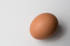 Brown Egg Royalty Free Stock Photography