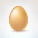 Brown egg,  on white background Royalty Free Stock Photo