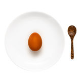 Brown egg on a white plate Stock Photos