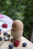 Brown egg on the wooden stand with a spoon Royalty Free Stock Image