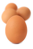 Brown Eggs Stock Photos