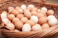 Brown eggs. Closeup of hundred brown eggs in the basket Royalty Free Stock Photography