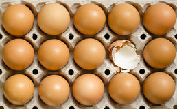 Brown eggs. In a carton Royalty Free Stock Photo
