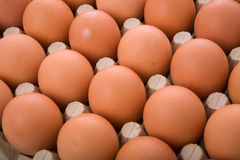 Brown eggs. In a box Royalty Free Stock Photo