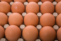 Brown eggs. In a box Royalty Free Stock Photos