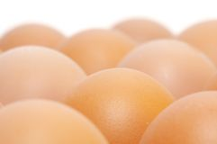 Brown eggs. On white background Royalty Free Stock Photography