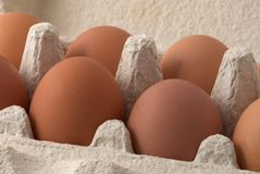 Brown eggs. In the box Royalty Free Stock Photo