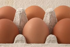 Brown eggs. In the box Stock Photography