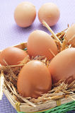 Brown eggs in a basket Stock Image