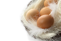 Brown eggs in the basket. On white background Royalty Free Stock Photo