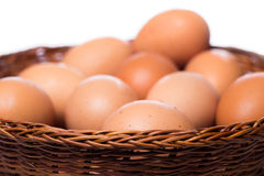 Brown eggs in basket. Close up of brown eggs in basket Stock Images