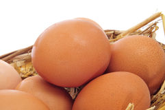 Brown eggs in a basket Royalty Free Stock Images