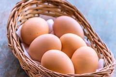 Brown Eggs in Basket. Organic brown eggs in a basket. Fresh brown eggs stock image Royalty Free Stock Image