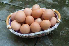 Brown eggs in Basket Stock Image