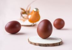 brown eggs, bird, Easter, brown eggs, bird, Easter royalty free stock images
