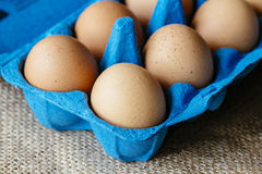 Brown eggs in blue egg carton Royalty Free Stock Photo