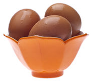 Brown Eggs in a Bowl. Isolated on White with a Clipping Path Stock Images