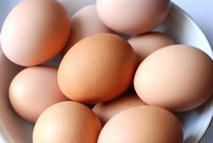 Brown Eggs in a Bowl. Many brown eggs in a bowl, set against a white background Royalty Free Stock Image