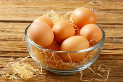 Brown eggs in a bowl. Brown eggs in a glass bowl Stock Image