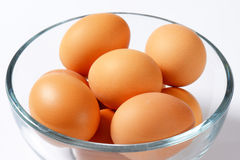 Brown eggs in a bowl. Brown organic eggs in a glass bowl Royalty Free Stock Photos