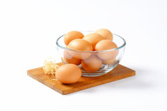 Brown eggs in a bowl. Brown organic eggs in a glass bowl Royalty Free Stock Image
