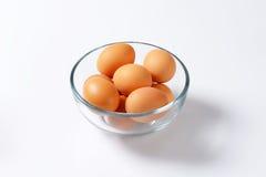Brown eggs in a bowl Stock Photos