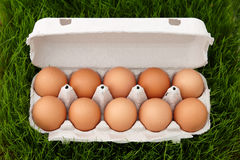 Brown eggs box in grass Royalty Free Stock Photos