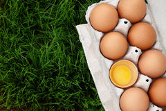 Brown eggs box in grass Stock Photography