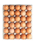 Brown eggs in a box isolated Stock Image