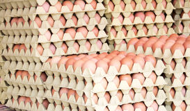 Brown eggs in boxes Stock Photos