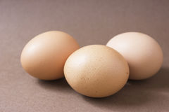 Brown eggs on a brown background. Three fresh brown chicken eggs are on a brown background Royalty Free Stock Photo