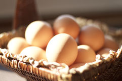 Brown eggs in a brown basket. Close view of a basket of brown eggs in a natural setting in front of a window with the natural sun shinning on the eggs royalty free stock photography