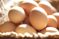 Brown eggs in a brown basket Stock Photo